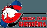 HC Gherdeina valgardena.it Logo