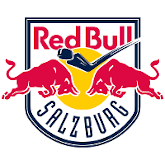 Red Bull Hockey Juniors Logo