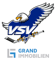 EC Panaceo VSV Logo