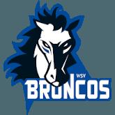Wipptal Broncos Weihenstephan Logo